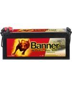 BANNER BUFFALO BULL SHD PRO 145AH 800A L+