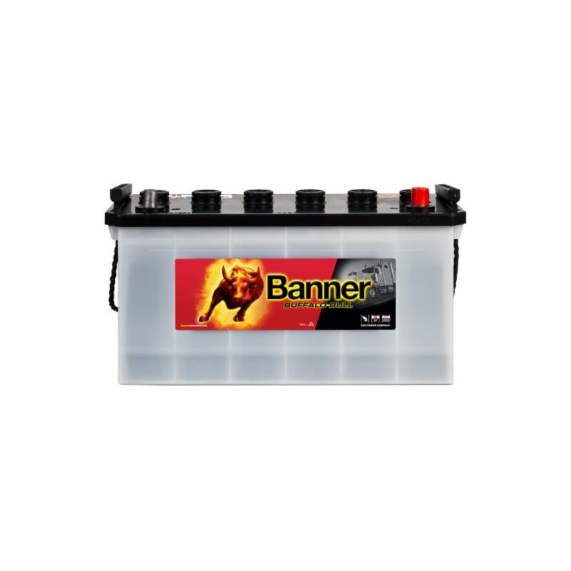 BANNER BUFFALO BULL 100AH 600A R+