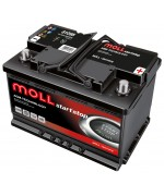 MOLL START/STOP PLUS AGM 95AH 850A R+